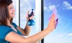 window-cloth-lady