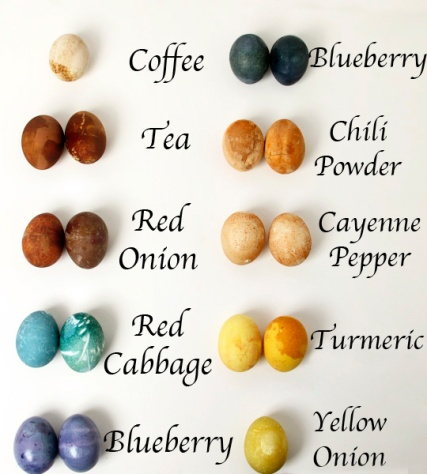 Egg-Titles1